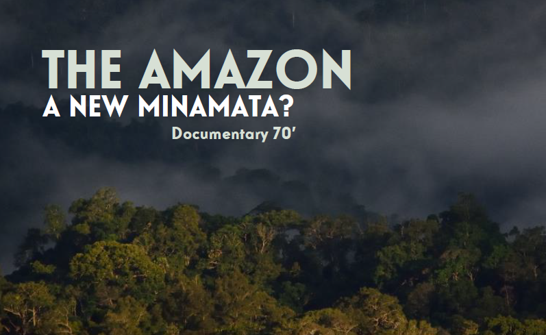 THE AMAZON, A NEW MINAMATA?